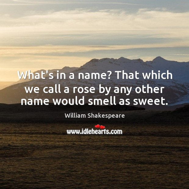 What's in a name? That which we call a rose by any other name would smell as sweet. Image
