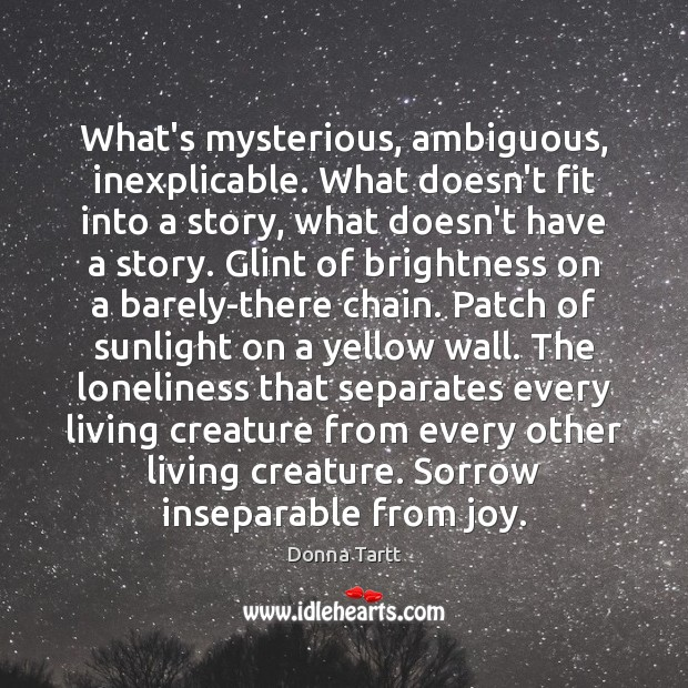 What's mysterious, ambiguous, inexplicable. What doesn't fit into a story, what doesn't Image