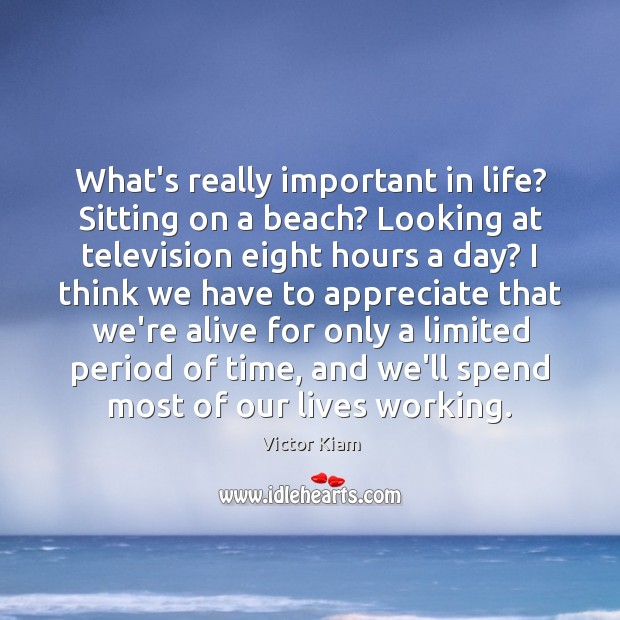 What's really important in life? Sitting on a beach? Looking at television Victor Kiam Picture Quote