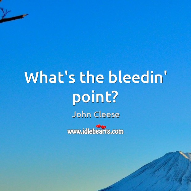 What's the bleedin' point? John Cleese Picture Quote