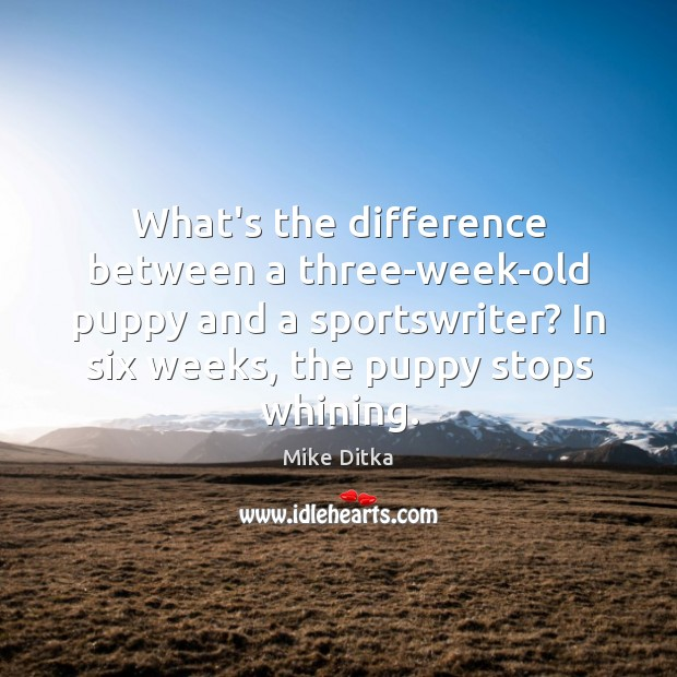 Image, What's the difference between a three-week-old puppy and a sportswriter? In six