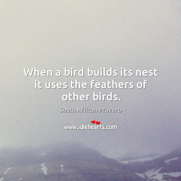 When a bird builds its nest it uses the feathers of other birds. South African Proverbs Image