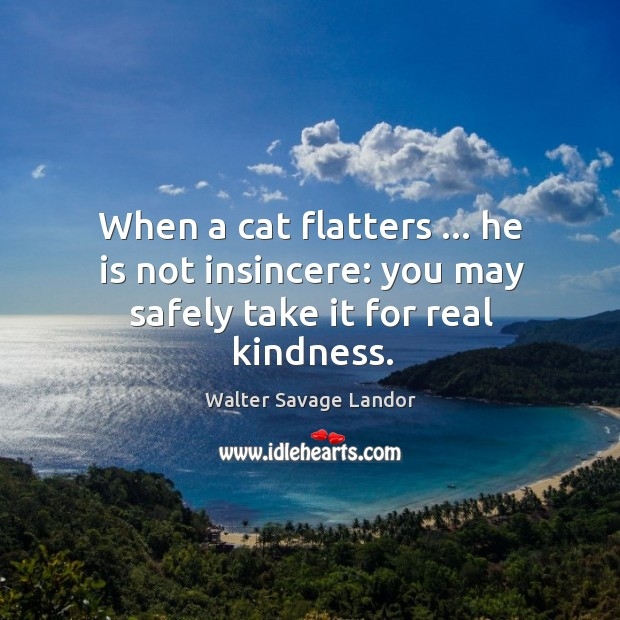 When a cat flatters … he is not insincere: you may safely take it for real kindness. Image