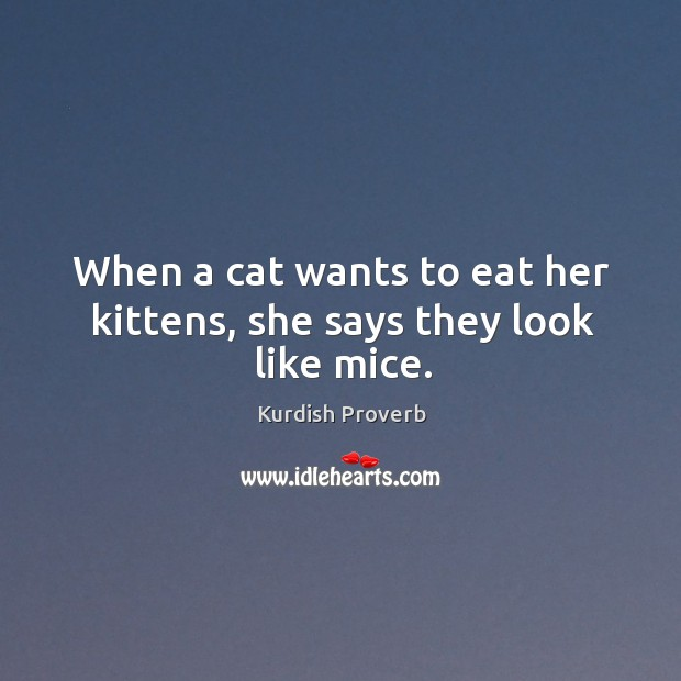 Image, When a cat wants to eat her kittens, she says they look like mice.