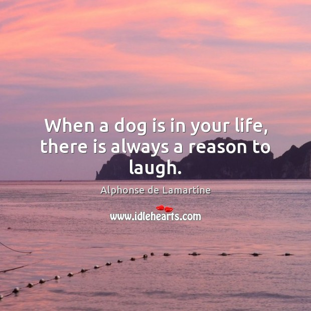 When a dog is in your life, there is always a reason to laugh. Alphonse de Lamartine Picture Quote
