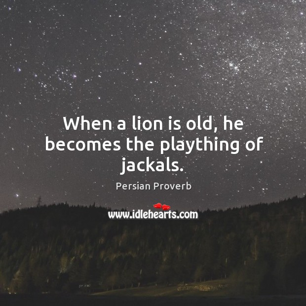 When a lion is old, he becomes the plaything of jackals. Persian Proverbs Image