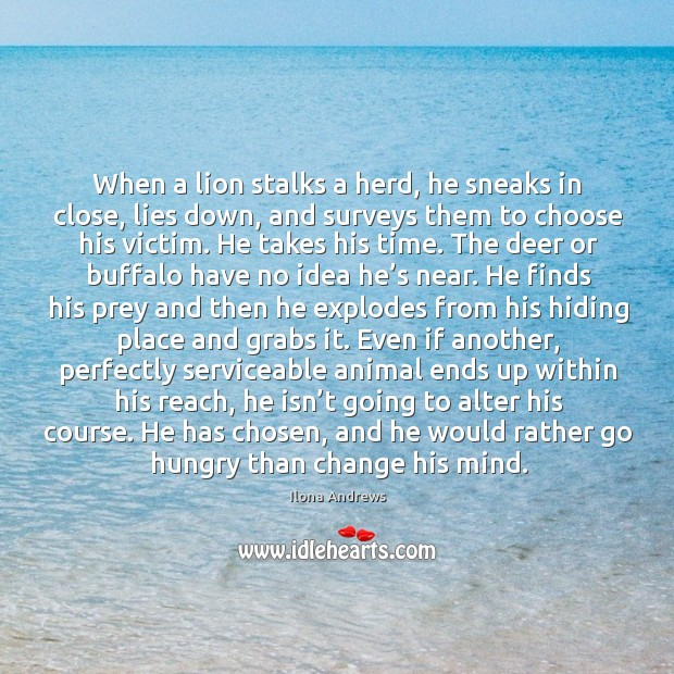 Image, When a lion stalks a herd, he sneaks in close, lies down,