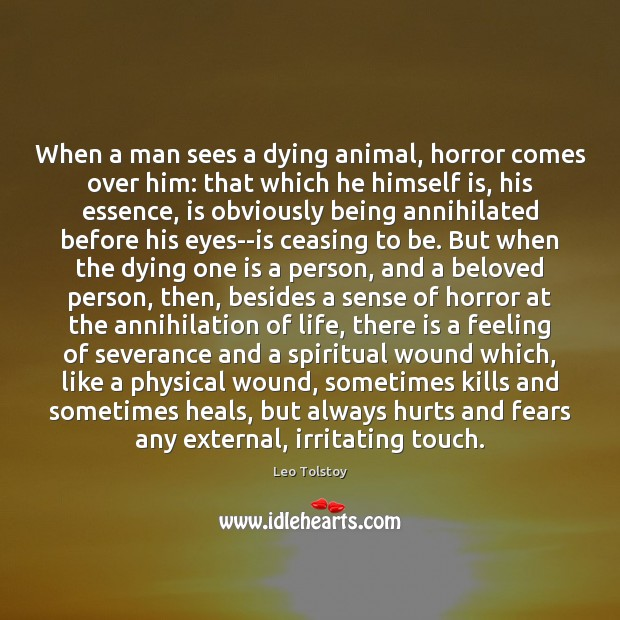 Image, When a man sees a dying animal, horror comes over him: that