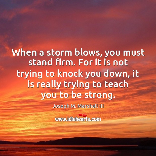 When a storm blows, you must stand firm. For it is not Image