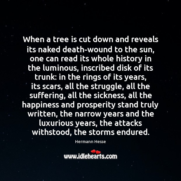 Image, When a tree is cut down and reveals its naked death-wound to