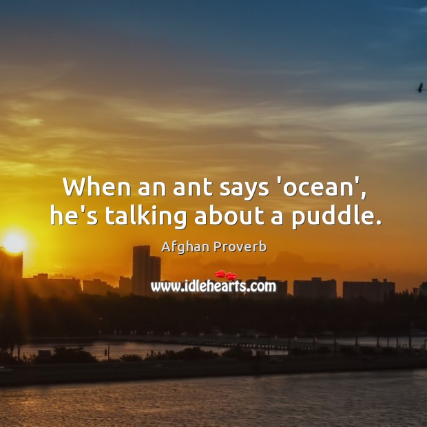 When an ant says 'ocean', he's talking about a puddle. Afghan Proverbs Image