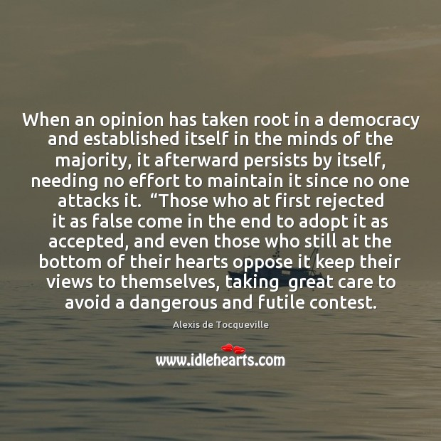 Image, When an opinion has taken root in a democracy and established itself