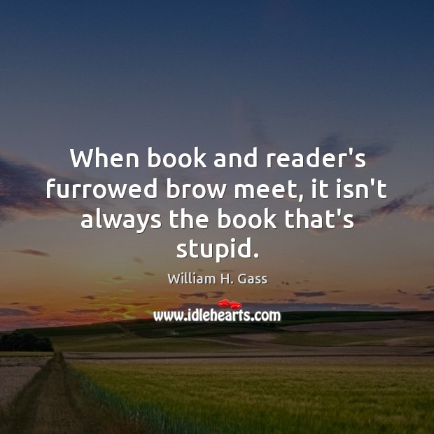 When book and reader's furrowed brow meet, it isn't always the book that's stupid. Image