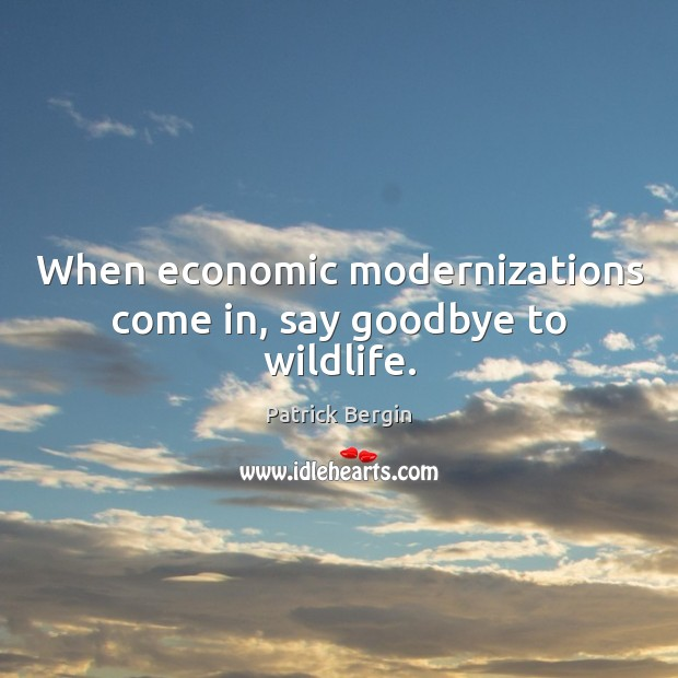 When economic modernizations come in, say goodbye to wildlife. Image