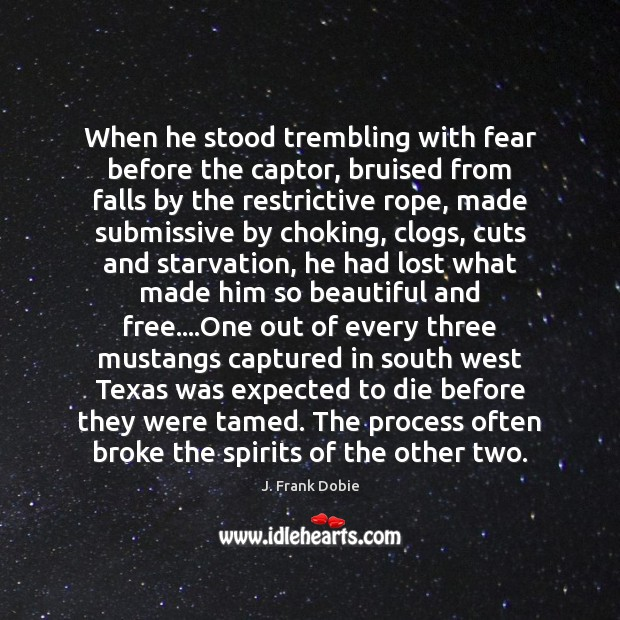 When he stood trembling with fear before the captor, bruised from falls Image