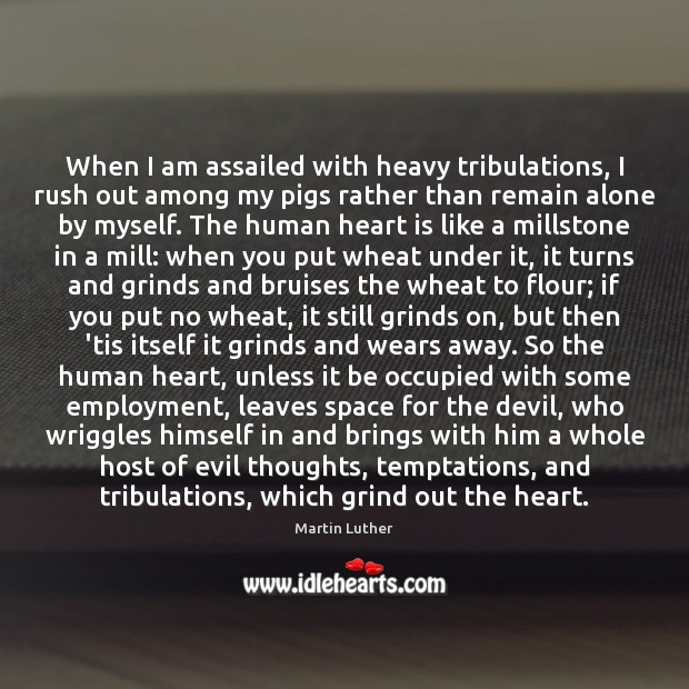 When I am assailed with heavy tribulations, I rush out among my Image