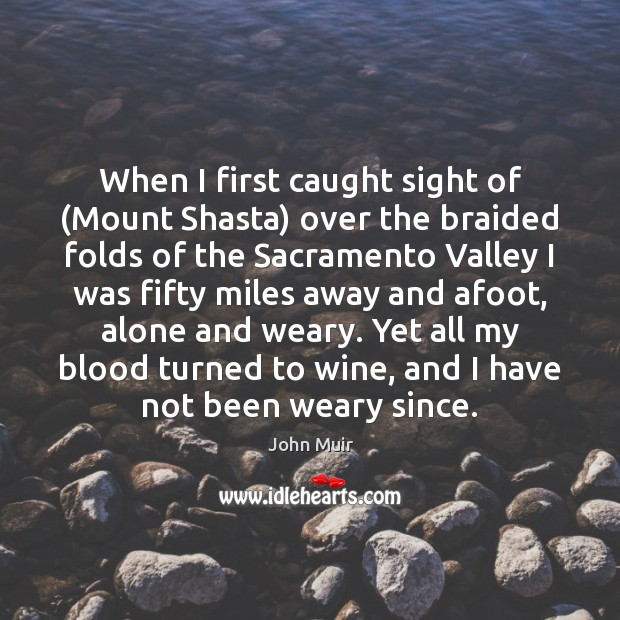 When I first caught sight of (Mount Shasta) over the braided folds Image