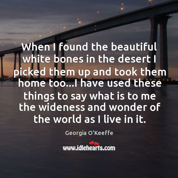 When I found the beautiful white bones in the desert I picked Image