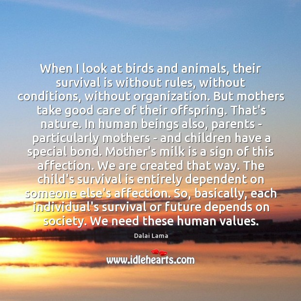 When I look at birds and animals, their survival is without rules, Image