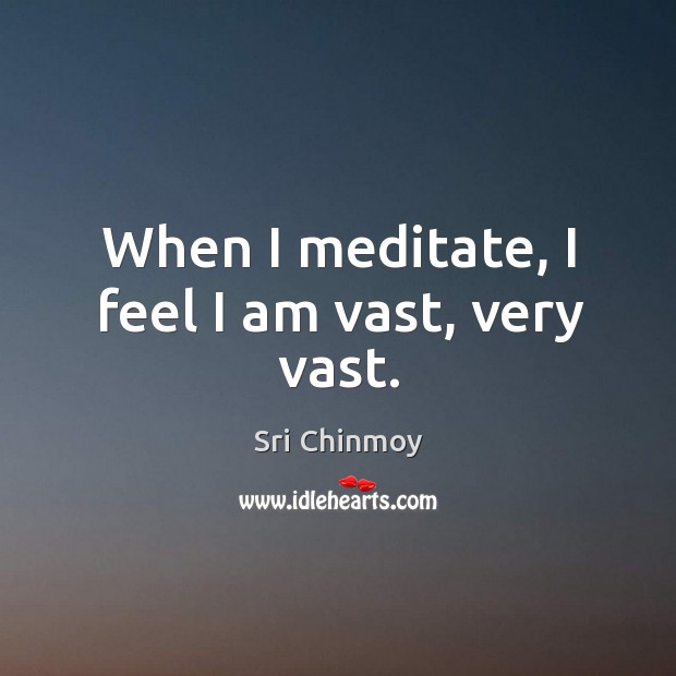 When I meditate, I feel I am vast, very vast. Image
