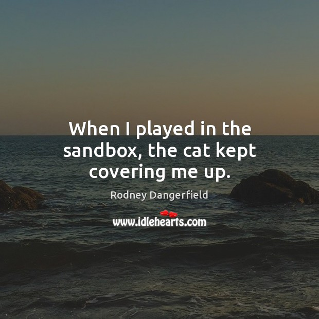 When I played in the sandbox, the cat kept covering me up. Image