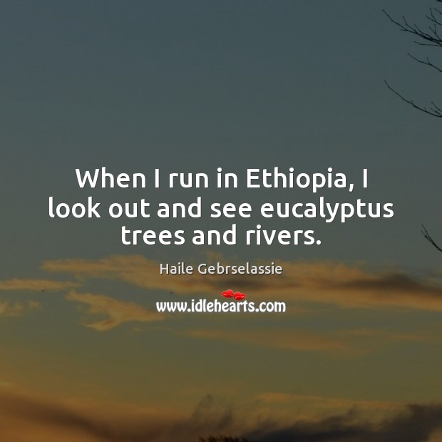 Image, When I run in Ethiopia, I look out and see eucalyptus trees and rivers.