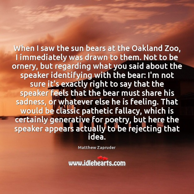 Image, When I saw the sun bears at the Oakland Zoo, I immediately