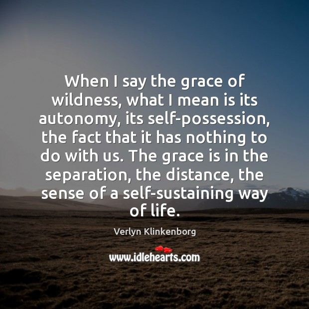 When I say the grace of wildness, what I mean is its Verlyn Klinkenborg Picture Quote