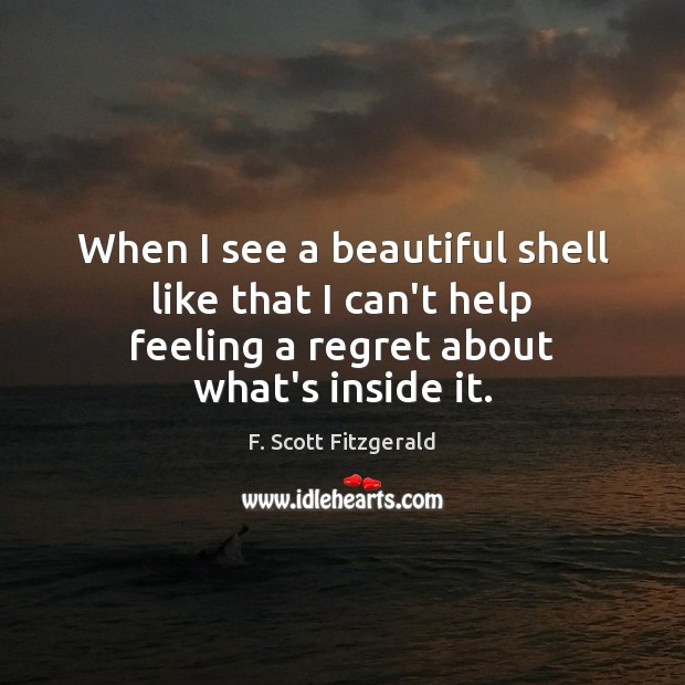 When I see a beautiful shell like that I can't help feeling Image