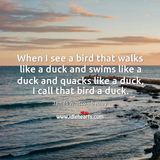 When I see a bird that walks like a duck and swims like a duck and quacks like a duck, I call that bird a duck. Image