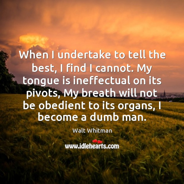 Image, When I undertake to tell the best, I find I cannot. My