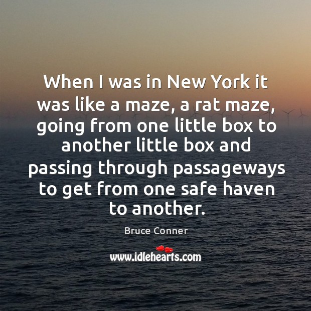 When I was in new york it was like a maze, a rat maze, going from one little box to another Image