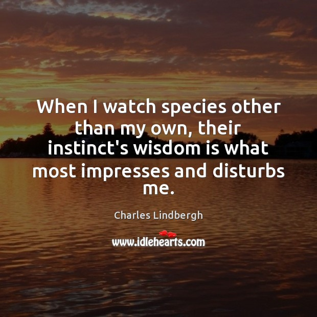 When I watch species other than my own, their instinct's wisdom is Image