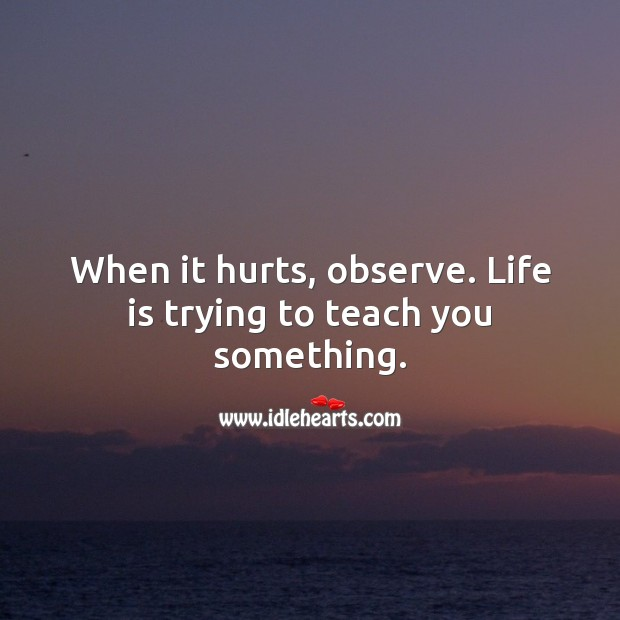When it hurts, observe. Life is trying to teach you something. Life Quotes Image