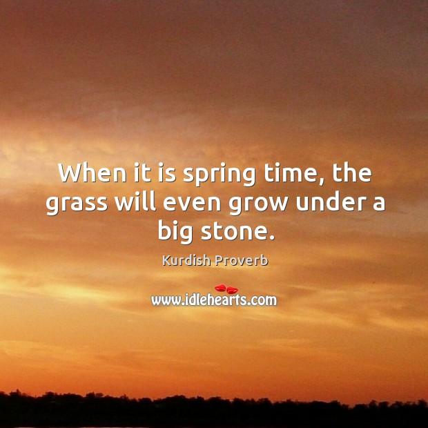 When it is spring time, the grass will even grow under a big stone. Kurdish Proverbs Image