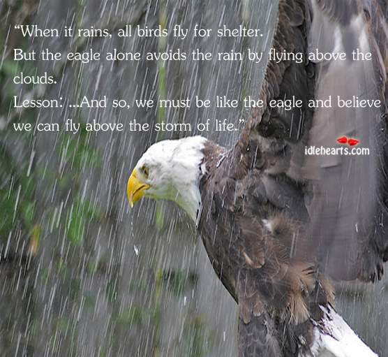 Be like an eagle and believe that you can fly above the storm. Alone Quotes Image