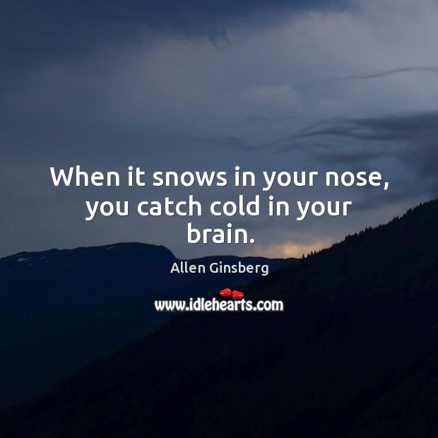 Image, When it snows in your nose, you catch cold in your brain.