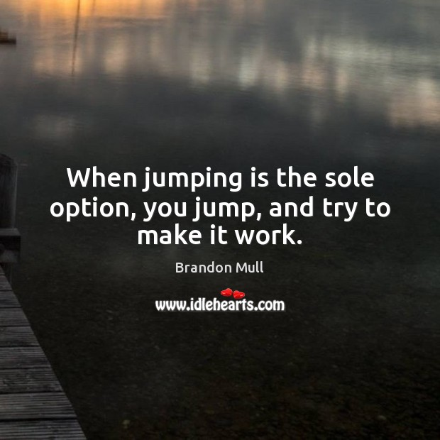 When jumping is the sole option, you jump, and try to make it work. Brandon Mull Picture Quote