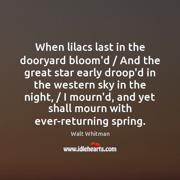 When lilacs last in the dooryard bloom'd / And the great star early Image