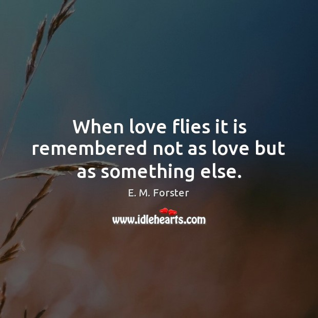 When love flies it is remembered not as love but as something else. Image