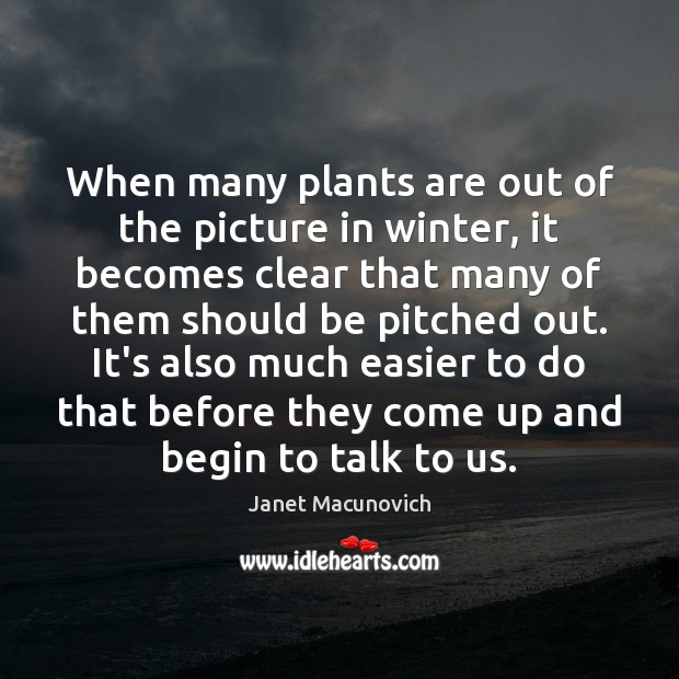 When many plants are out of the picture in winter, it becomes Janet Macunovich Picture Quote