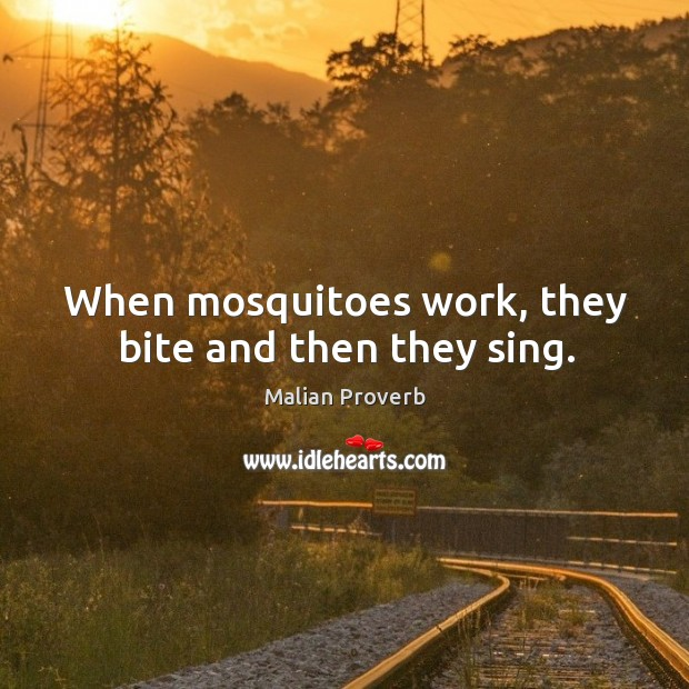 When mosquitoes work, they bite and then they sing. Malian Proverbs Image