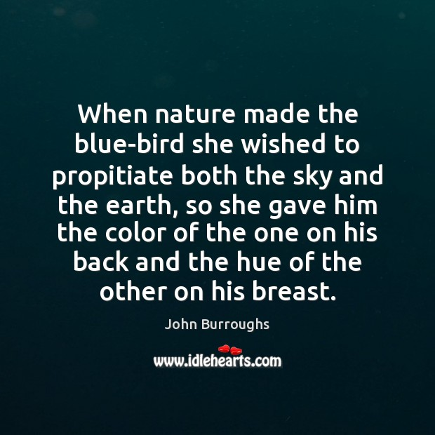 When nature made the blue-bird she wished to propitiate both the sky Image