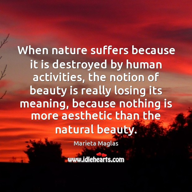 When nature suffers because it is destroyed by human activities, the notion Image