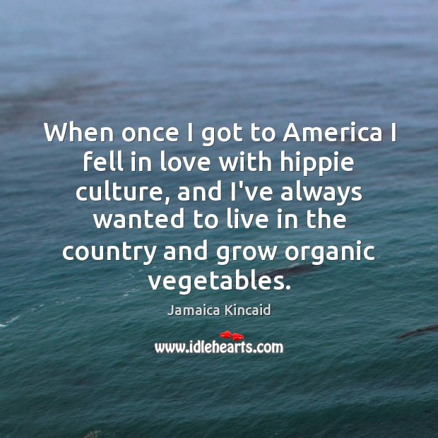 When once I got to America I fell in love with hippie Culture Quotes Image