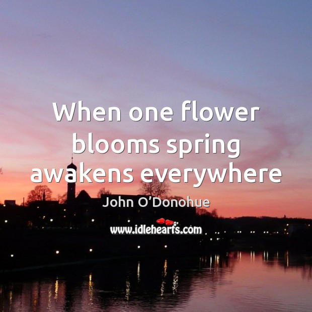 When one flower blooms spring awakens everywhere John O'Donohue Picture Quote