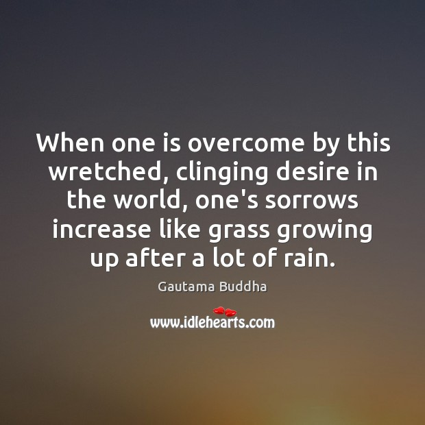When one is overcome by this wretched, clinging desire in the world, Gautama Buddha Picture Quote