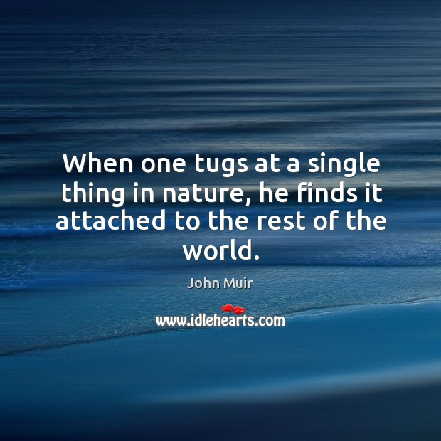 When one tugs at a single thing in nature, he finds it attached to the rest of the world. Image