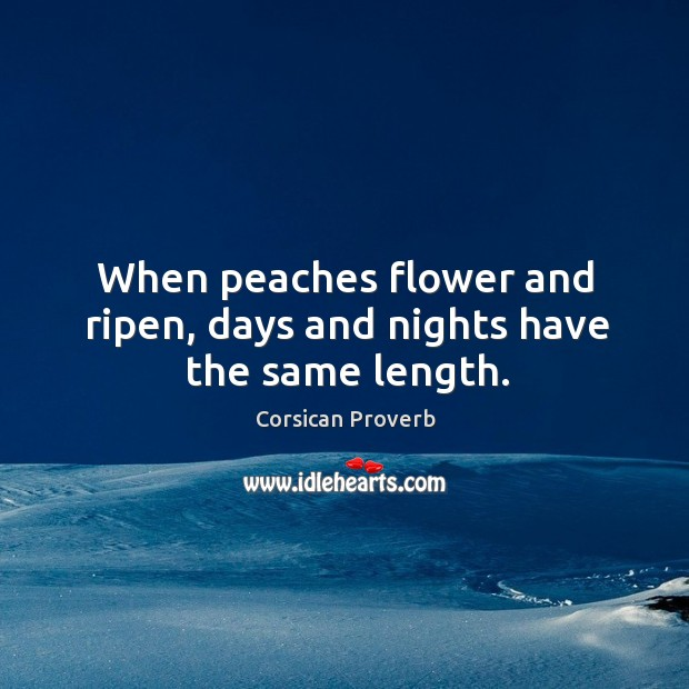 Image, When peaches flower and ripen, days and nights have the same length.