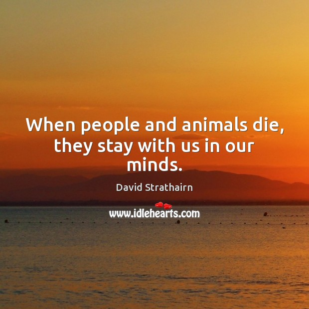 When people and animals die, they stay with us in our minds. Image